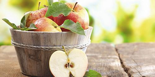 Eingelegtes Obst