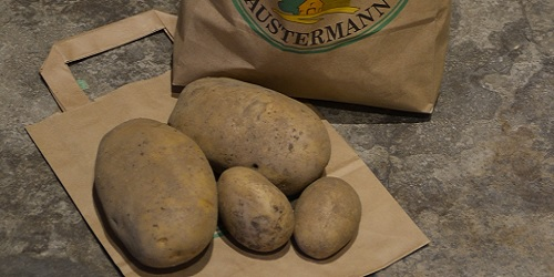 Gemüse (frisch)